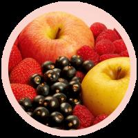 icono frutos rojos